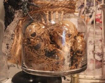 Apothecary Jar of skulls