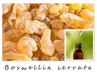 FRANKINCENSE ESSENTIAL OIL, Boswellia serrata, Frankincense Oil, 100% Pure Therapeutic Essential Oil