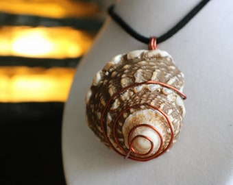 Wire wrapped Cone shell necklace