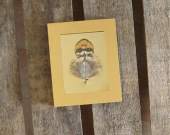 Pheasant feather revered framed / unique / the pen box
