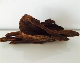 Driftwood - driftwood - medium tillandsia - terrarium - root - mangrove