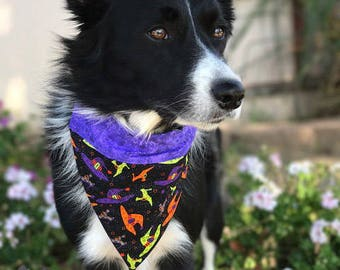 Witchy Puppy - Over The Collar Bandana