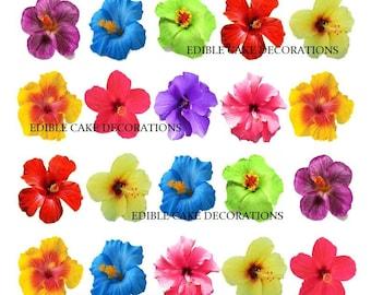 hibiscus | etsy fr