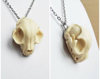 pendant faux skull cat ivory 3d taxidermy replica resin anatomy animal gothic pagan occult macabre witch witchy witchcraft dark