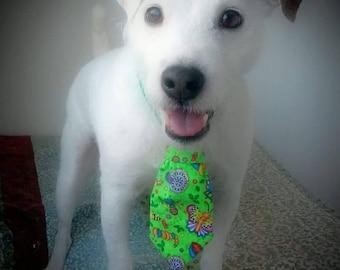 Green Summer Buzzzzzz Dog Tie