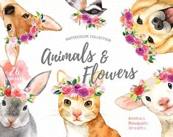Animals & Flowers