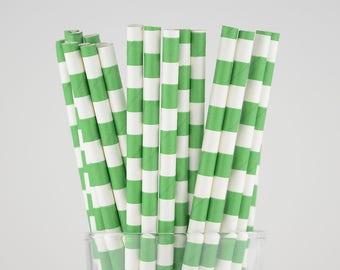 Green Circle Paper Straws - Mason Jar Straws - Party Decor Supply - Cake Pop Sticks - Party Favor