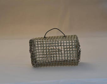 Miniature cage, carrier for mouse, insect or imaginary friend