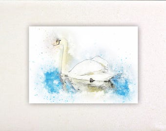 Swan - Watercolor prints, watercolor posters, nursery decor, nursery wall art, wall decor, wall prints | Tropparoba - 100% made in Italy