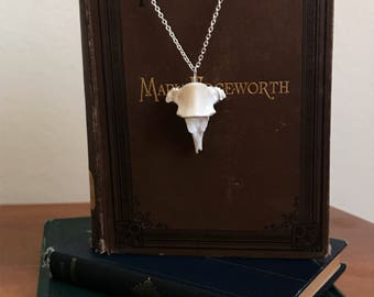 Coyote Vertebrae Necklace
