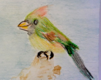 Female Northern Cardinal Watercolor Painting, Original Painting, Bird Watching