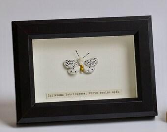 Hand embroidered White ermine moth
