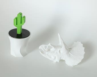 Cactus and Dinosaur triceratops 3D printed