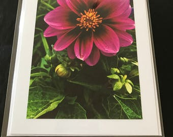 Handmade Floral Greeting Cards