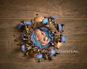 Newborn digital background digital backdrop Newborn Backdrop prop baby girl or boy flowers nest wreath  Digital Photography#14