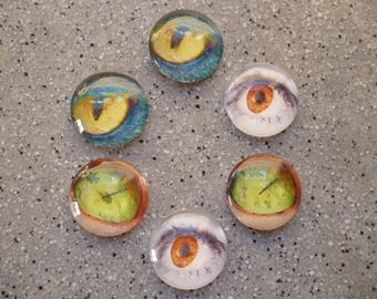 6 illustrated eye glass 20 mm round cabochon