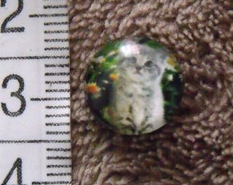 cabochon glass cat theme 12mm