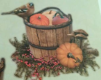 set of 33 pieces for card making 3D 3 wit matching fall pumpkin, squirrel, bird themed.