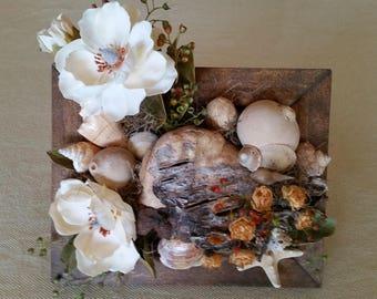 Seashells, Pods and Silks