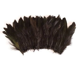 Long black feathers