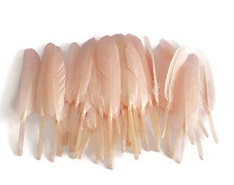 Pink tinted Indian feathers