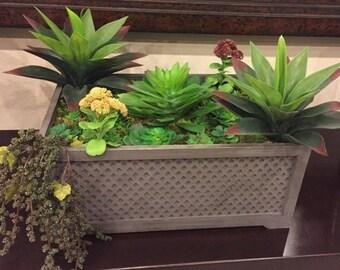 Extra Large Rectangular Crate Succulent Arrangement