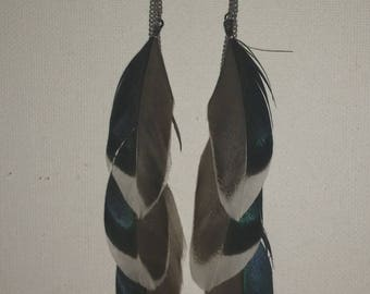 Natural iridescent feather earrings
