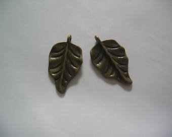 Set of 2 bronze charms - dimensions 30mm (BR077)