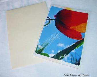 "Double 10 5x15cm made from a photo of a poppy and a rainbow ""Rainbow poppy"""