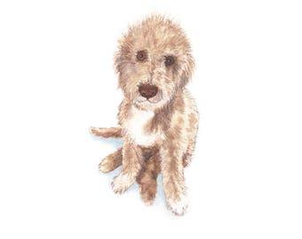 Greetings Card - Bedlington Terrier