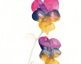 Pansy flower watercolour painting. Print