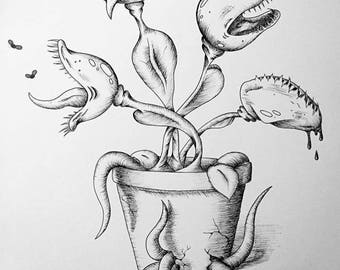 Venus Fly Trap Black and White Ink Drawing