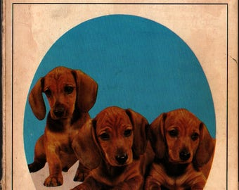 Know Your Dachshund - Earl Schneider  - Vintage Guide Book