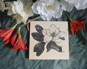 Magnolia Tree Blossom 8x8 inch Wood Print on cradled wood panel