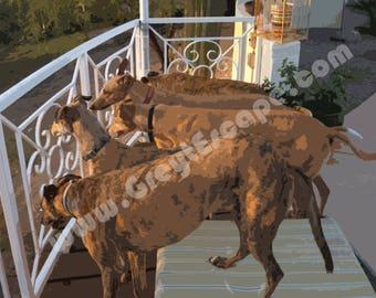 10 pack, Greyhound Note Card, WATCHING RABBITS, sighthound card, greyhound stationary, greyhound card, sighthound note card, greeting card