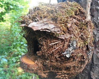 Outdoor Birdhouse, Rustic Mossy bird house with Forest Finds, garden art, woodland birdhouse