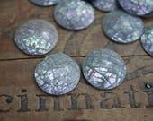 Mosaic Shell Flatback Round Cabochon Brown Lip Shell Round Rhinestone Flatbacks (2) CL50