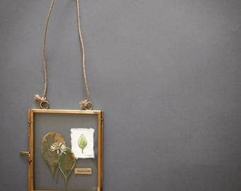 """Small glass Herbarium - plant and Botanical drawing """"Collecting"""" frame"""