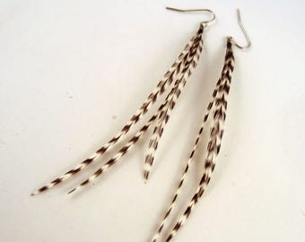 Tiger stripe dangler feather earrings grizzly