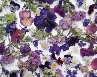 Dried Flowers, Wedding Confetti, Lavender Confetti, Craft Supply, Aisle,  Decor, Flower Girl Basket,  Decoration, Dry Rose Petals, 10 Boxes
