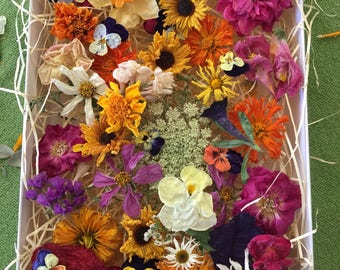 100 Dried Flowers, Wedding Confetti, Dry Wildflowers, Craft supply, Centerpieces, Aisle Decor, Table Decor, Flower Girl, Biodegradable, Real