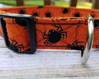 Orange Spider Halloween Dog Collar