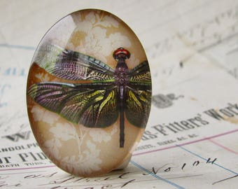 Dark wing dragonfly with wallpaper background, 40x30mm, handmade glass oval cabochon, insect, bug, garden, Winged Wonders collection