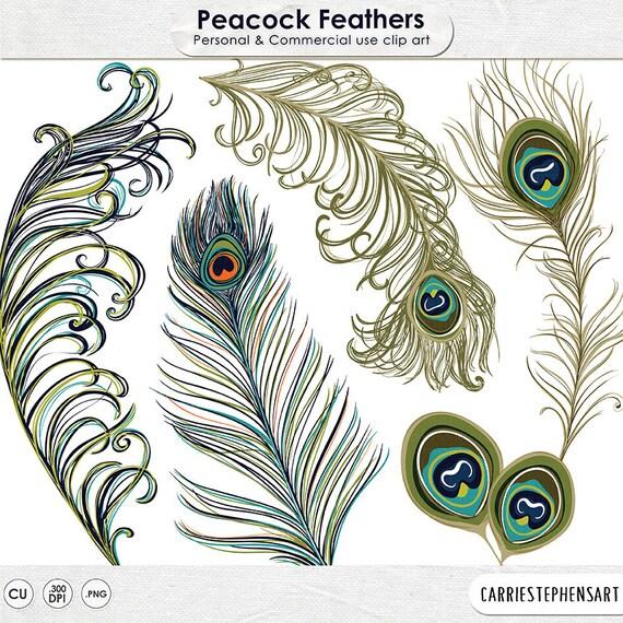 Peacock Feather ClipArt Illustration DIY Invitation