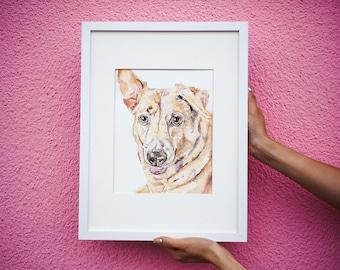 Custom Australian Cattle Dog Portrait, Pet Loss Gift, Dog Memorial Portrait, Sympathy Gift, Original Watercolor Dog Portrait