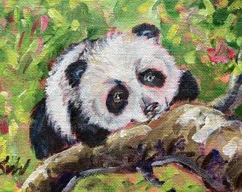 "Panda  Original Painting Children's Art Panda Art Animals Kids art original art 5 x 7"""