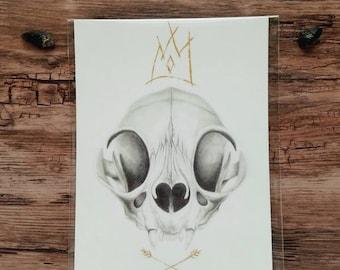 Prince of Curiosity Cat Skull Prints