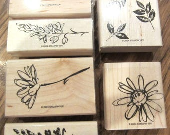Stampin Up 2004 Two-Step Stampin Petal Prints Rubber Stamp Set