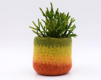 Felt succulent vase, Air plant holder, Hygge decor, Fall colors, felted planter, cactus vase, housewarming gift, Mini Plant Vase, for her