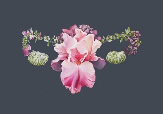 Utérus Floral réservé